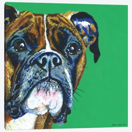 Boxer On Emerald, Square Canvas Print #KWO18} by Kirstin Wood Canvas Wall Art