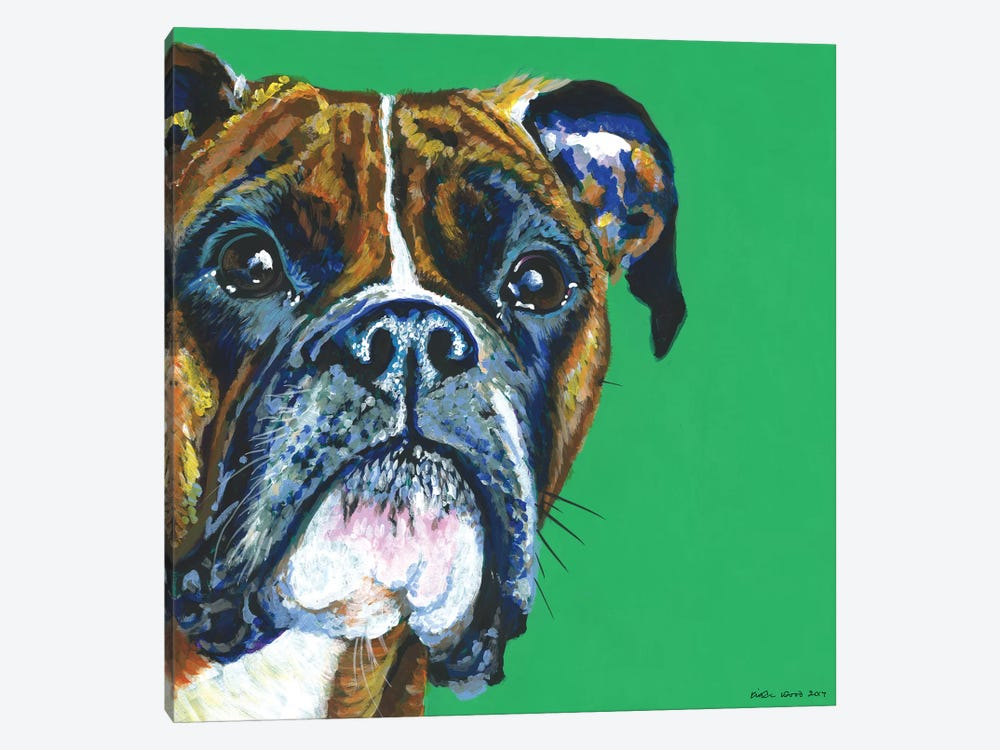 Boxer On Emerald, Square by Kirstin Wood 1-piece Canvas Art Print