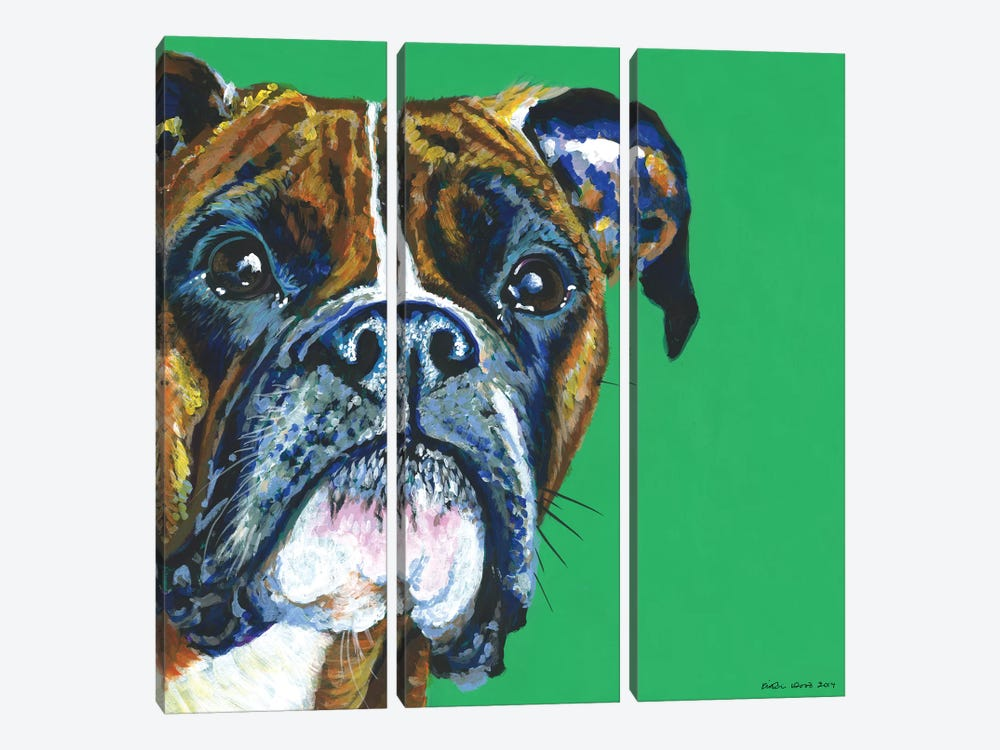 Boxer On Emerald, Square by Kirstin Wood 3-piece Canvas Art Print