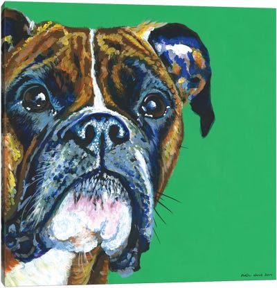 Boxer On Emerald, Square Canvas Art Print