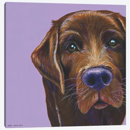 Brown Labrador On Lilac, Square 3-Piece Canvas #KWO19} by Kirstin Wood Canvas Wall Art