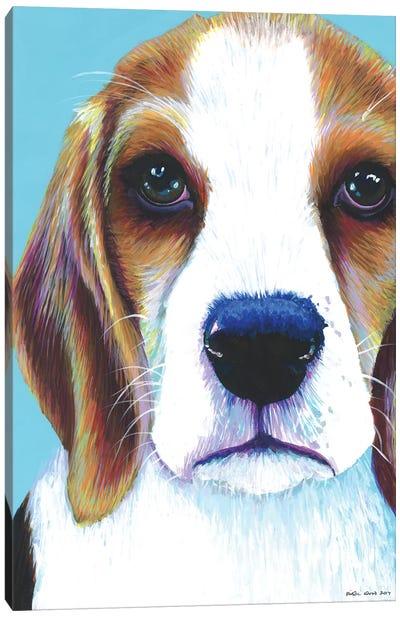 Beagle On Aqua Canvas Art Print