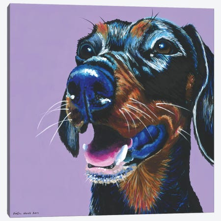 Dachshund On Lilac, Square Canvas Print #KWO21} by Kirstin Wood Art Print