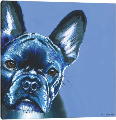 French Bulldog On Blue, Square Canvas Art Print