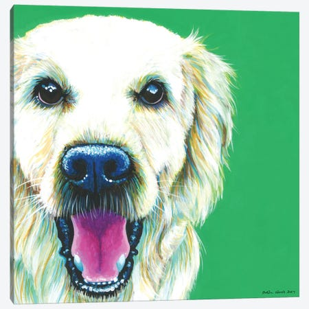 Golden Retriever On Emerald, Square Canvas Print #KWO24} by Kirstin Wood Canvas Artwork
