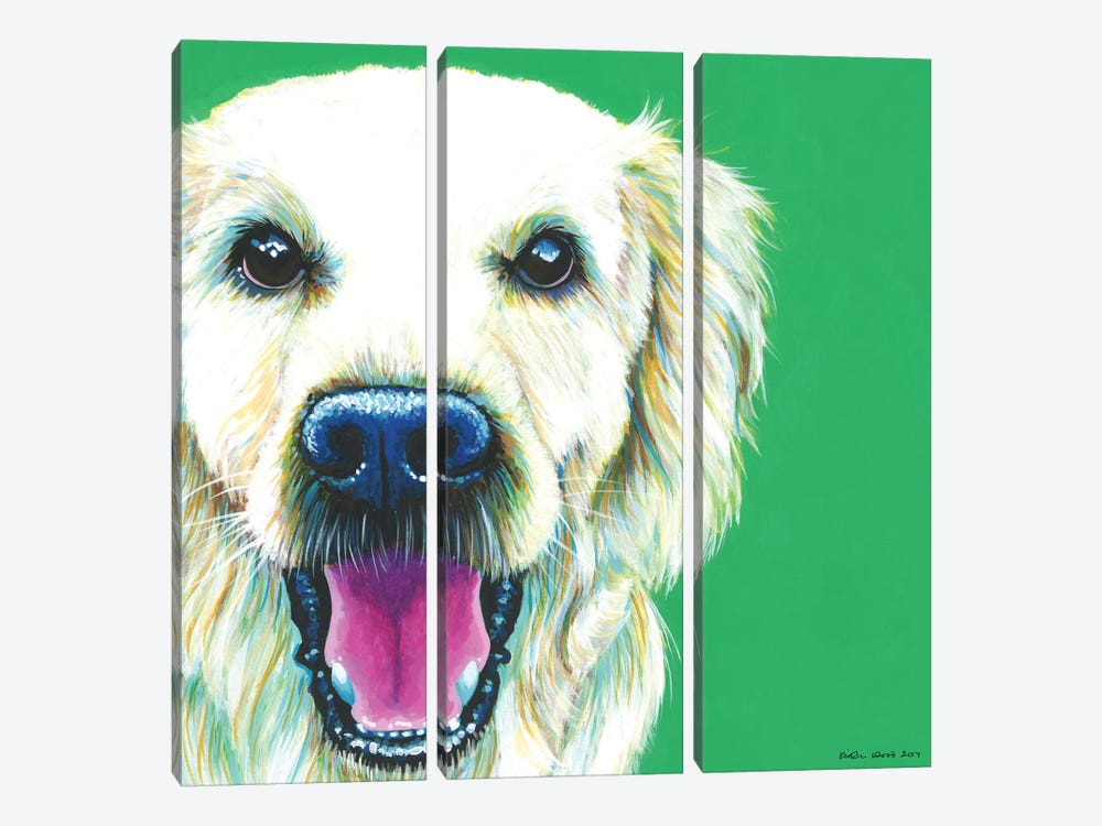 Golden Retriever On Emerald, Square by Kirstin Wood 3-piece Canvas Wall Art