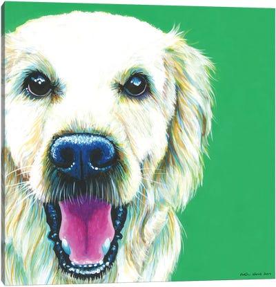 Golden Retriever On Emerald, Square Canvas Art Print