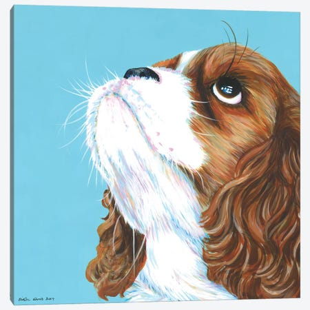 King Charles Cavalier On Aqua, Square Canvas Print #KWO25} by Kirstin Wood Canvas Art