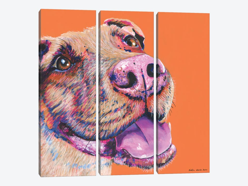 Pitbull On Orange, Square by Kirstin Wood 3-piece Canvas Artwork