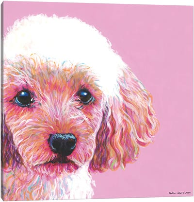 Poodle On Pink, Square Canvas Art Print