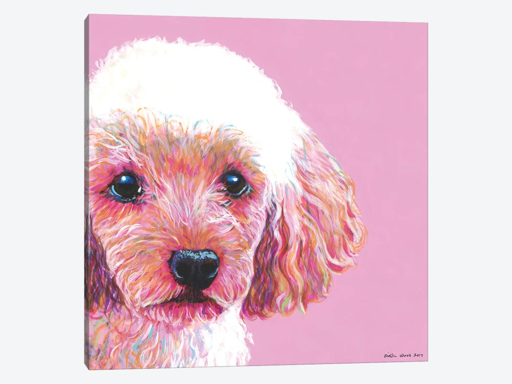 Poodle On Pink, Square by Kirstin Wood 1-piece Art Print