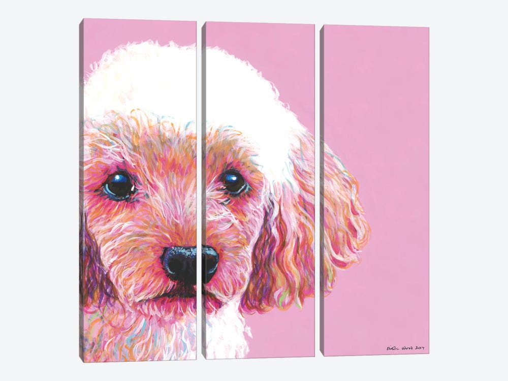 Poodle On Pink, Square by Kirstin Wood 3-piece Canvas Art Print