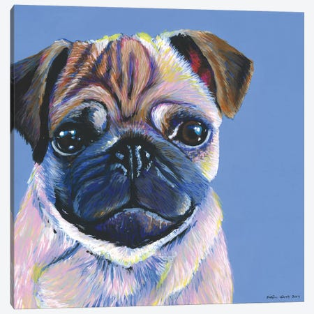 Pug On Blue, Square Canvas Print #KWO28} by Kirstin Wood Art Print