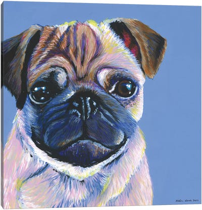 Pug On Blue, Square Canvas Art Print
