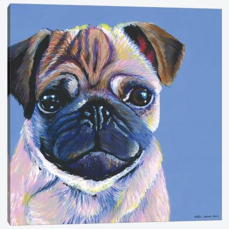 Pug On Blue, Square Canvas Print #KWO28} by Kirstin Wood Art Print
