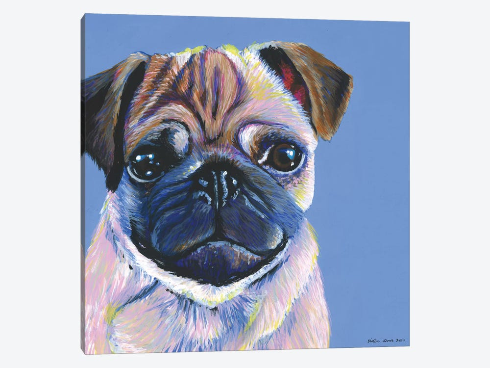 Pug On Blue, Square by Kirstin Wood 1-piece Canvas Art