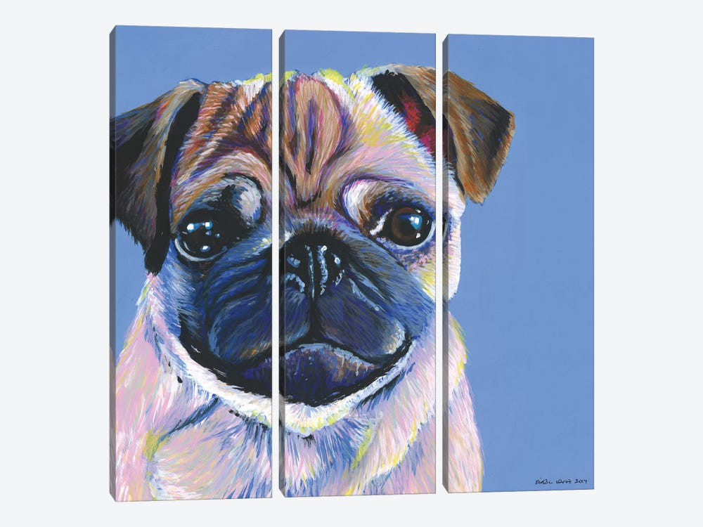 Pug On Blue, Square by Kirstin Wood 3-piece Canvas Art