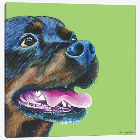 Rottweiller On Lime, Square Canvas Print #KWO29} by Kirstin Wood Art Print