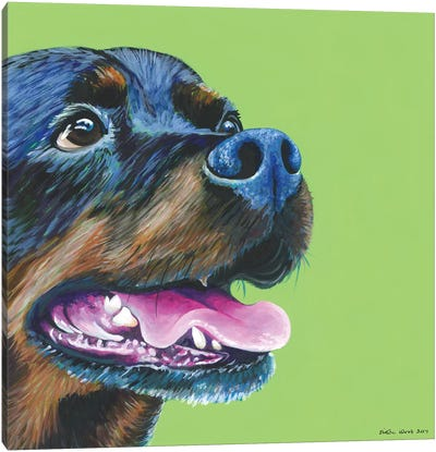Rottweiller On Lime, Square Canvas Art Print