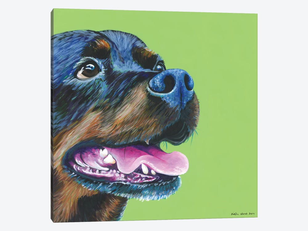 Rottweiller On Lime, Square by Kirstin Wood 1-piece Canvas Print