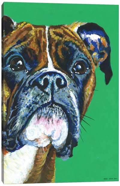 Boxer On Emerald Canvas Art Print