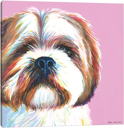 Shih Tzu On Pink, Square Canvas Art Print