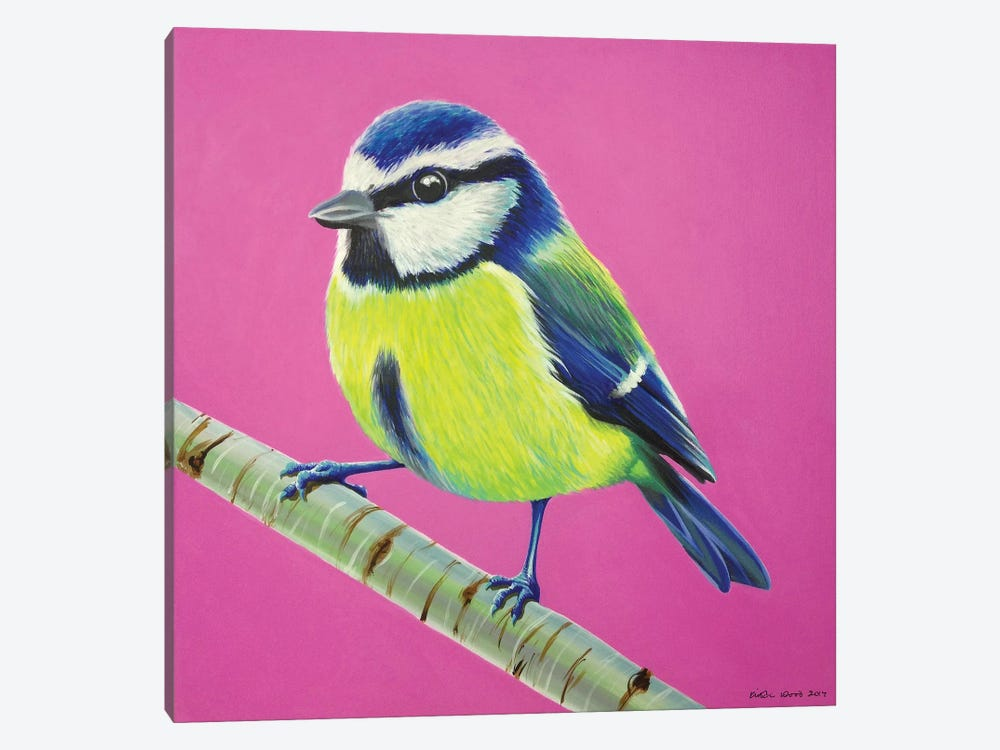 Blue Tit by Kirstin Wood 1-piece Canvas Wall Art