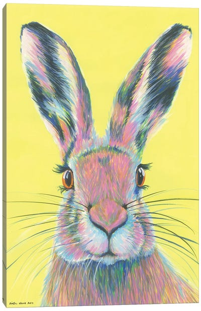 Mad March Hare Canvas Art Print