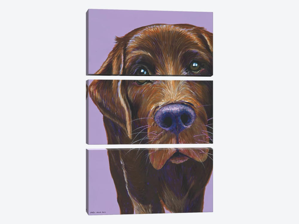 Brown Labrador On Lilac by Kirstin Wood 3-piece Canvas Art