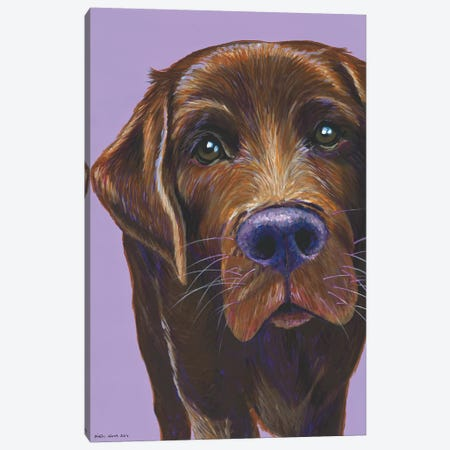 Brown Labrador On Lilac Canvas Print #KWO3} by Kirstin Wood Canvas Artwork