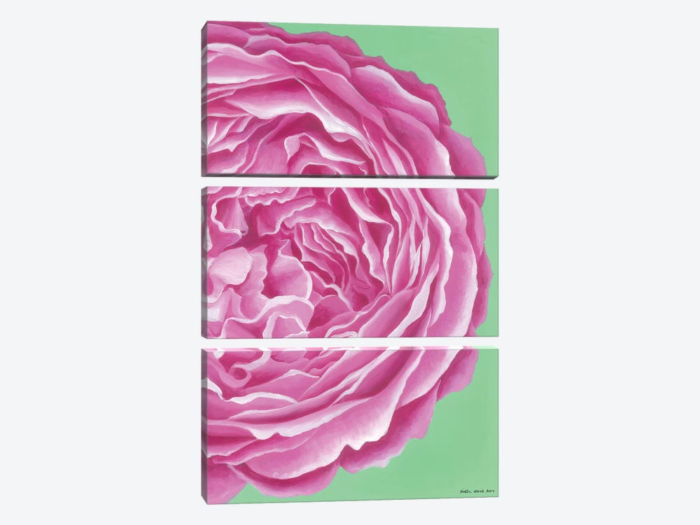 Pink Rose by Kirstin Wood 3-piece Canvas Art