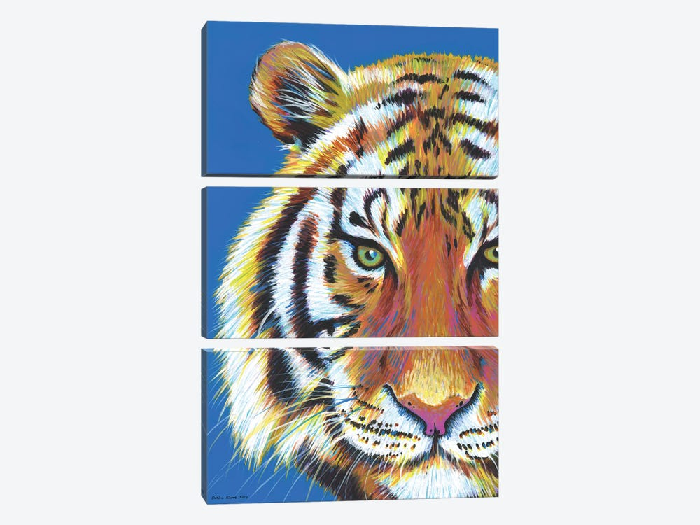 Tiger Tiger by Kirstin Wood 3-piece Art Print