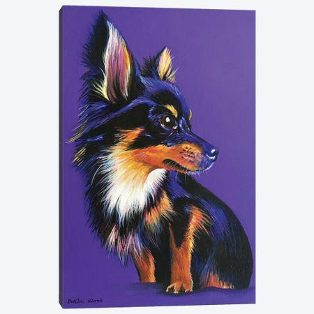 Chihuahua On Purple Canvas Print #KWO52} by Kirstin Wood Canvas Artwork