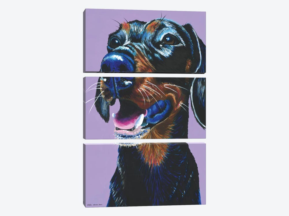 Dachshund On Lilac by Kirstin Wood 3-piece Canvas Artwork