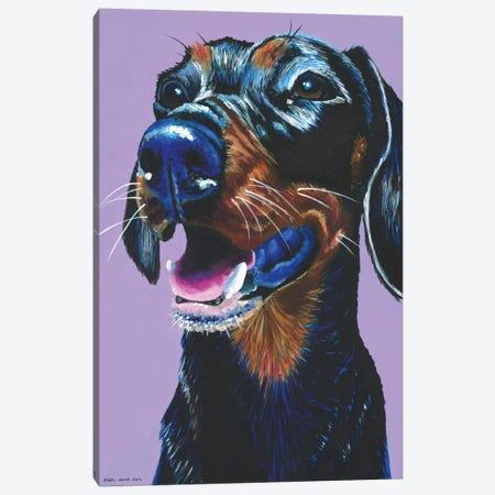Dachshund On Lilac Canvas Print #KWO5} by Kirstin Wood Canvas Art Print