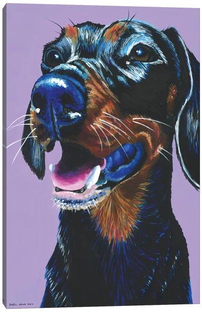 Dachshund On Lilac Canvas Art Print