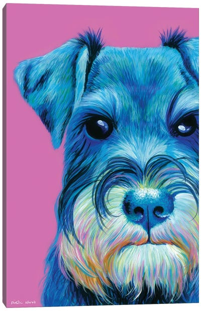 Schnauzer On Pink Canvas Art Print