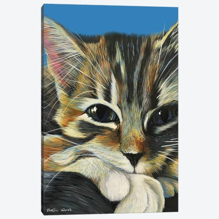 Tabby On Blue Canvas Print #KWO64} by Kirstin Wood Canvas Artwork