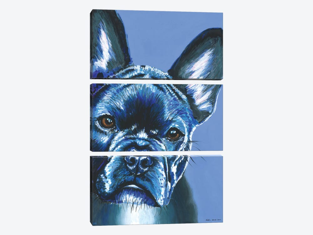 French Bulldog On Blue by Kirstin Wood 3-piece Art Print