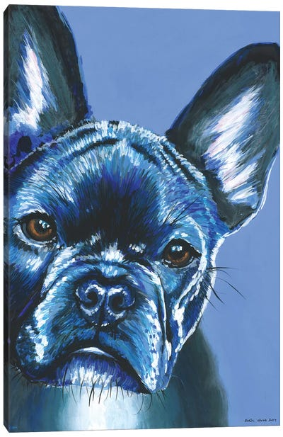 French Bulldog On Blue Canvas Art Print