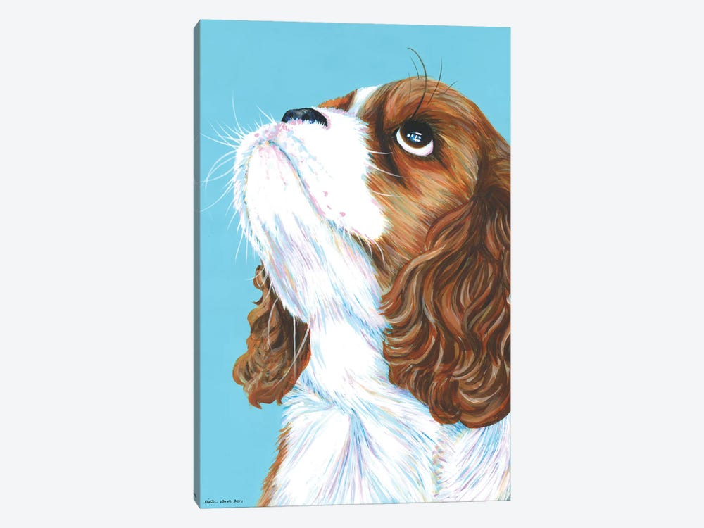 King Charles Cavalier On Aqua by Kirstin Wood 1-piece Canvas Artwork