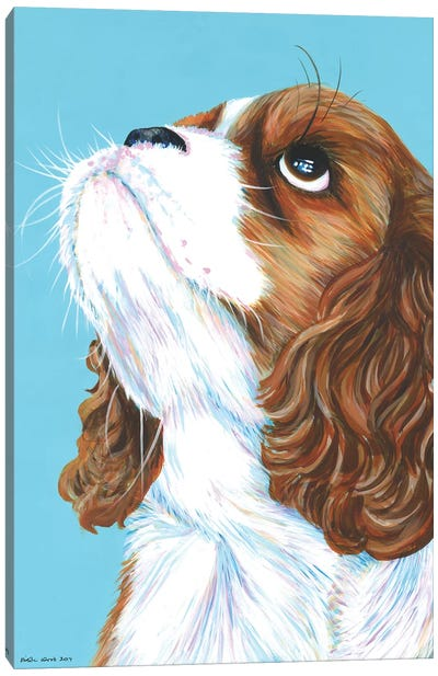King Charles Cavalier On Aqua Canvas Art Print