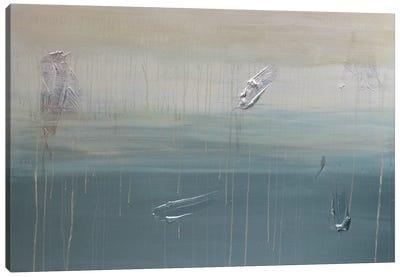 Lilli Pads And Last Night's Rain Canvas Print #KYO208