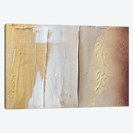 Gold Dust IV Canvas Print #KYO310} by Kent Youngstrom Canvas Print