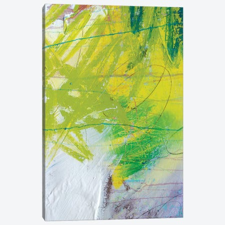 Green Apple III Canvas Print #KYO58} by Kent Youngstrom Art Print