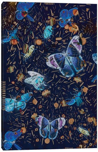 Confetti With Butterflies II Canvas Art Print