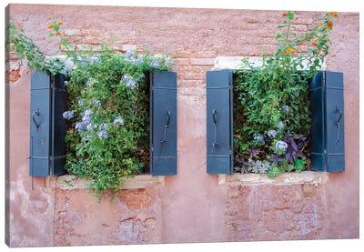 Italian Window Flowers II Canvas Art Print
