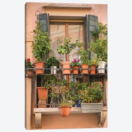 Italian Window Flowers III Canvas Print #LAD4} by Laura DeNardo Canvas Print