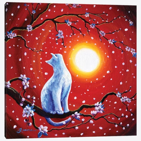 White Cat In Bright Sunset Canvas Print #LAI110} by Laura Iverson Canvas Art
