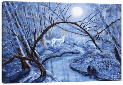 White Stag At Dunawi Creek Canvas Art Print